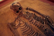 Primeira análise de DNA fenício revela ancestralidade europeia