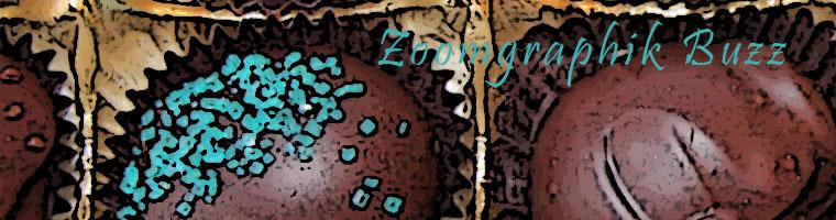 zoomgraphik