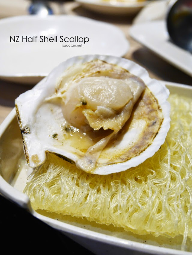 NZ Half Shell Scallop
