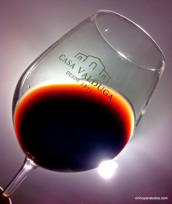 Qual a graça de provar um vinho antigo? Veja nossa opinião sobre o Casa Valduga Seculum Merlot 2000 #cbe