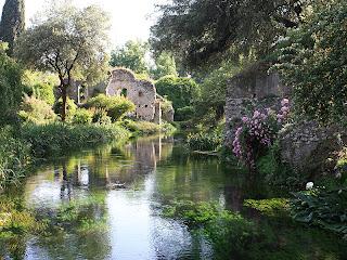Fiori Piante E Giardini Del Mondo