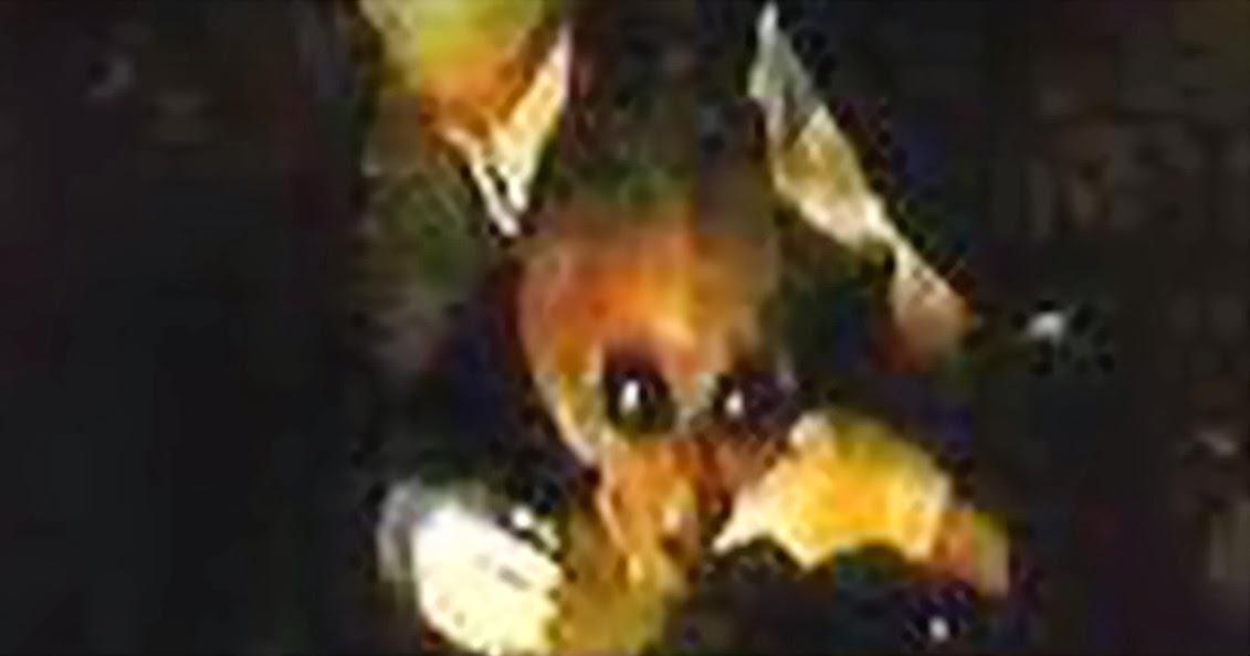 7 foto penampakan ufo yang paling menggemparkan dari