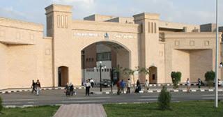 نسبة النجاح فى البكالوريوس  بكلية طب بيطرى جامعة كفر الشيخ: 91,5%