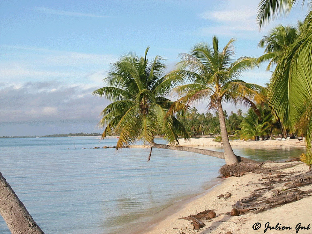 rencontre en ligne au polynesie