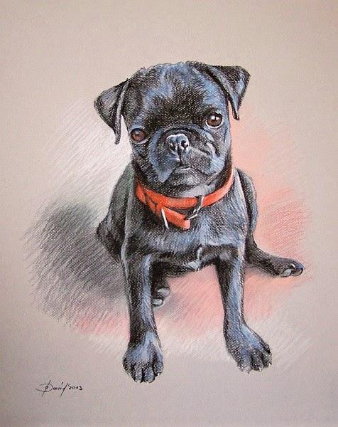 Hundeportrait, Pastellzeichnung