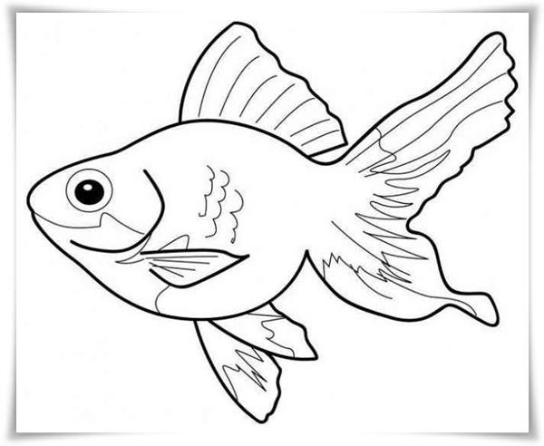 Fantastisch Die Lorax Fisch Malvorlagen Bilder - Ideen färben ...