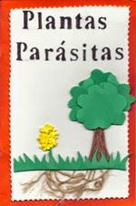 http://revistascmc.blogspot.com.es/