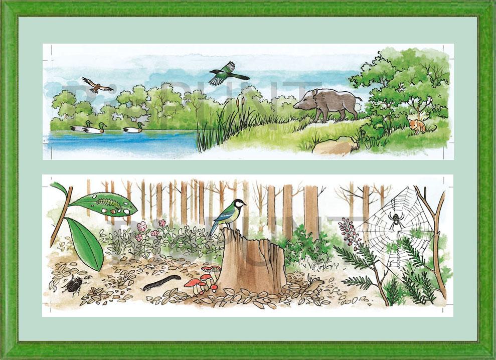 galeria natural & natural gallery: julio 2012