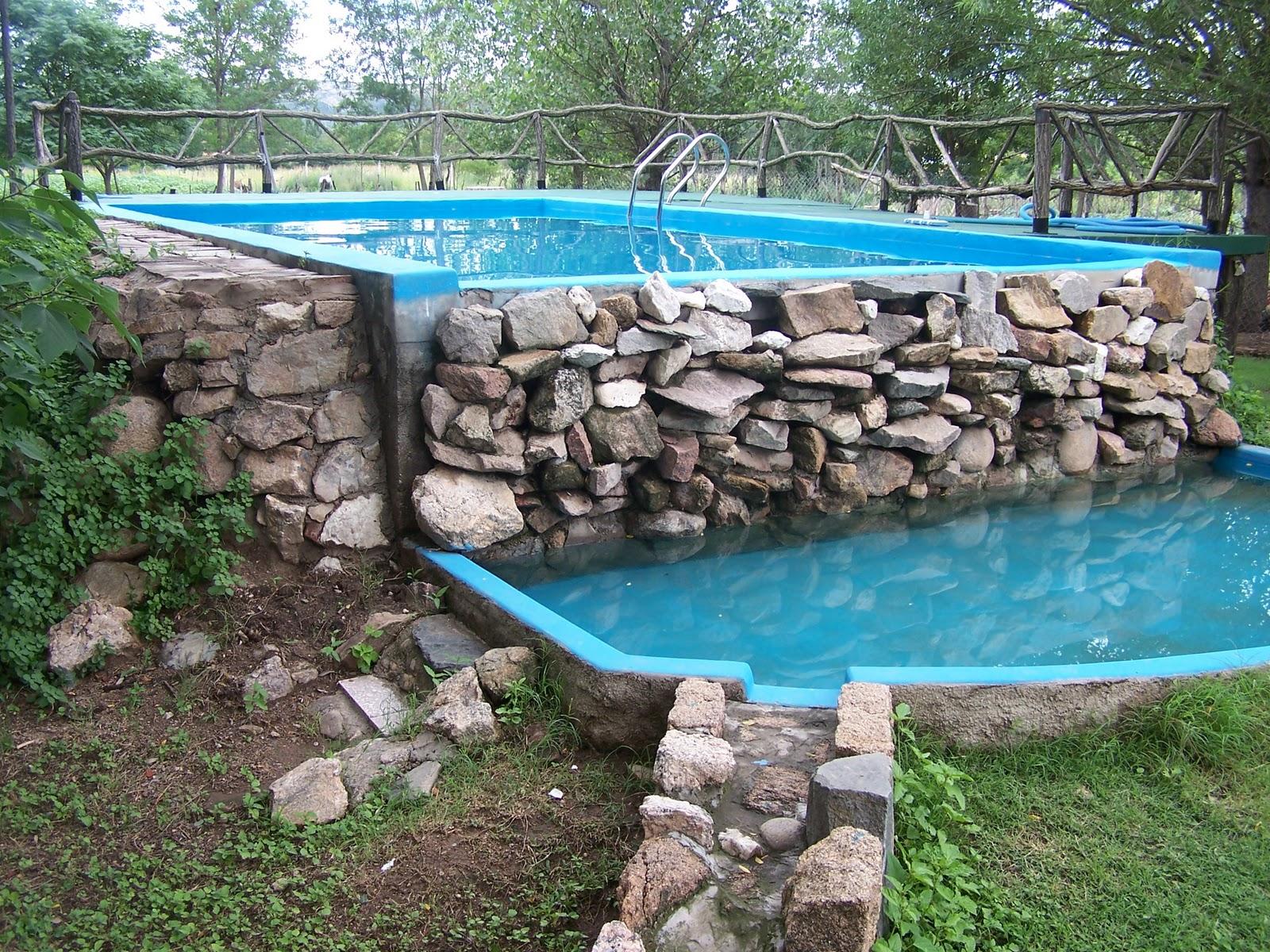 Pileta de nataci n menta y peperina for Piletas con cascadas
