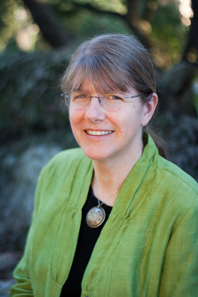 Literary Rambles: INTERVIEW WITH ANNE NESBET AND THE CABINET OF ...