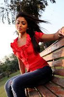 Shriya, Saran, HD, Pix