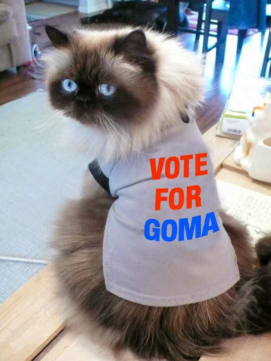 Vote for Goma