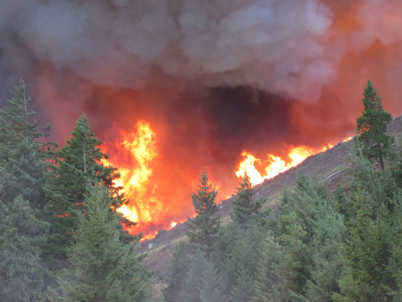 2013 fire season fact sheet available