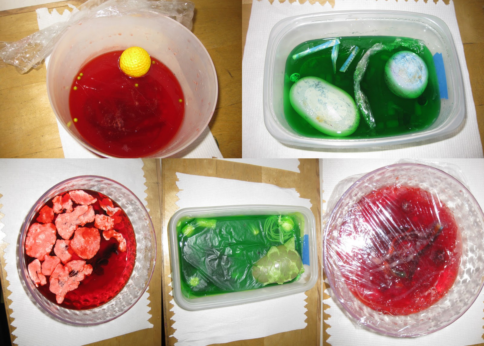 Plant Cell Project with Jello http://mrskoehnke.blogspot.com/2011/04/6th-grade-jello-cell-project_605.html