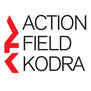 Action Field Kodra Volunteers
