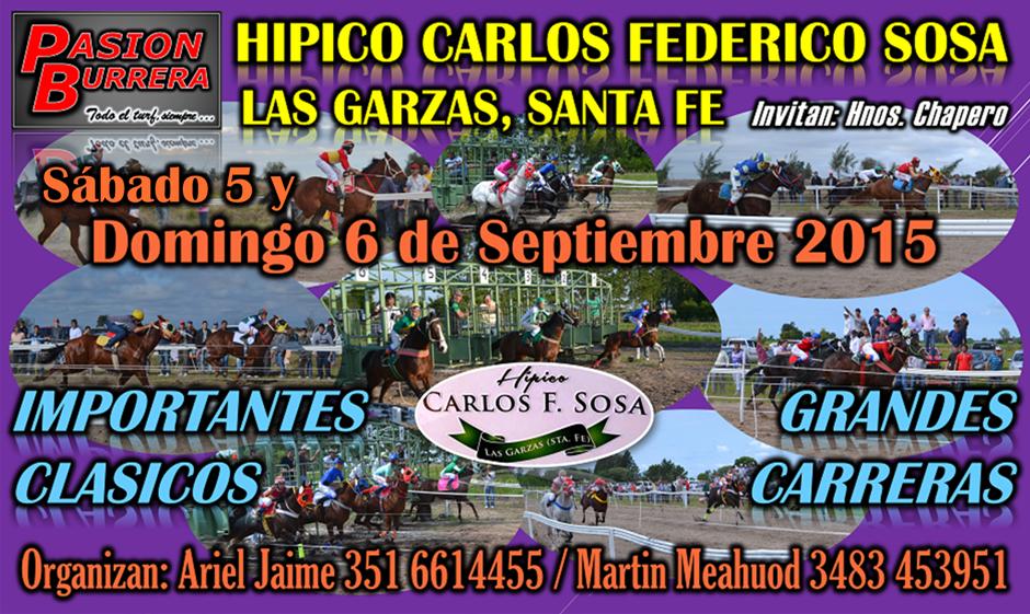 LAS GARZAS 06-09