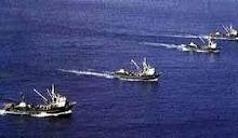 Depredación del Mar Argentino, otro logro del Gobierno Nac & Pop