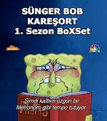 SpongeBob SquarePants - S�ngerBob Kare�ort - 1. Sezon - BoXSet - DVBRip XviD - T�rk�e Dublaj