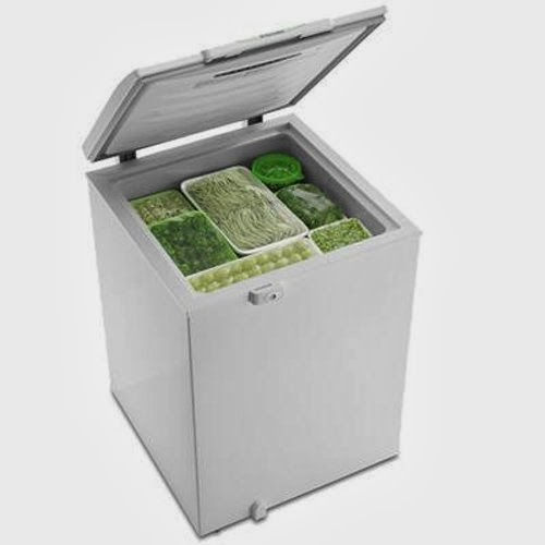 Uso del congelatore a pozzetto per organizzare i pasti e for Congelatore a pozzetto piccolo
