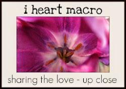 I love macro