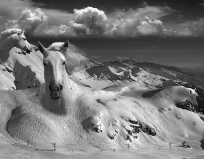 Manipulação de fotos sem PhotoShop, por Thomas Barbey