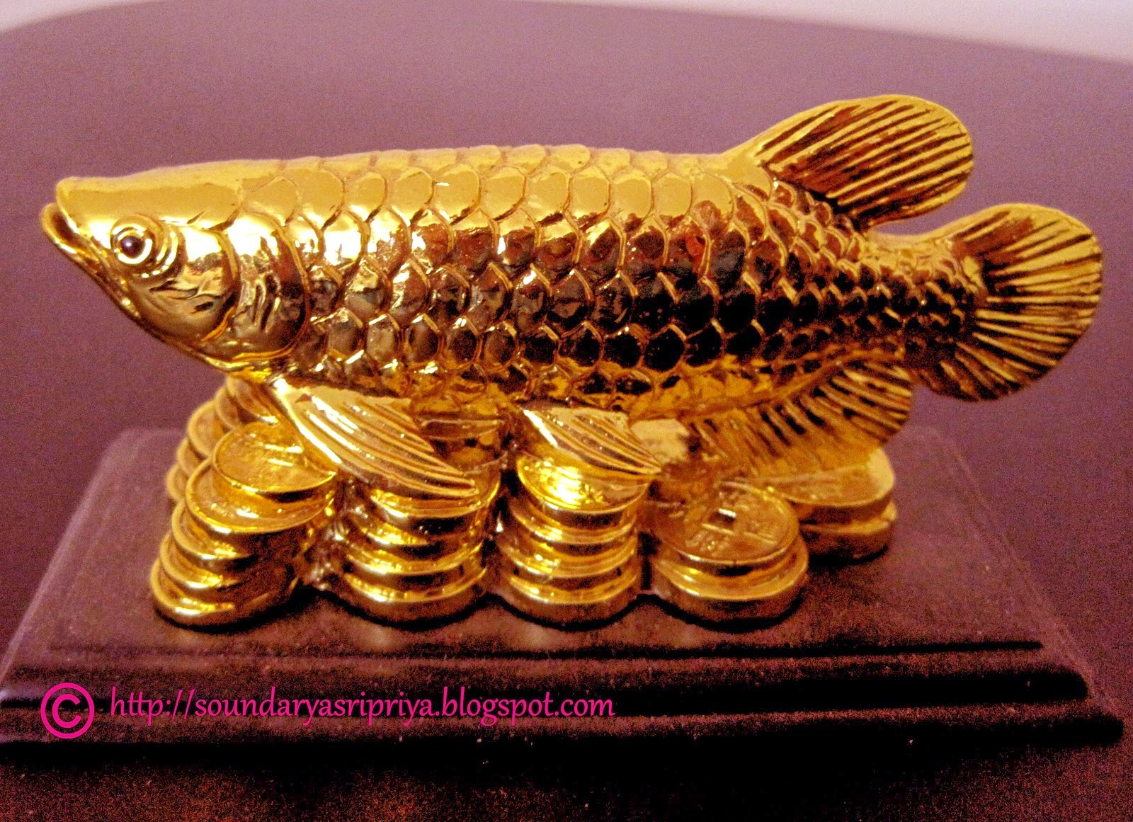 Armonizaci n a trav s del feng shui simbolos de - Feng shui prosperidad ...