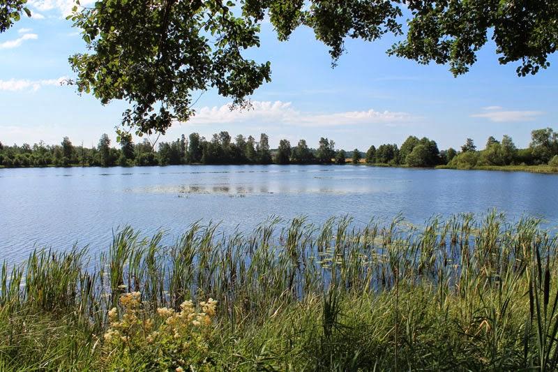 Vista sul fiume Helgeå dalla piazzola di sosta Anilla