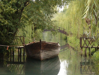 Weeping-willow-Canal-Clitunno-beauty-of-Italy-travel