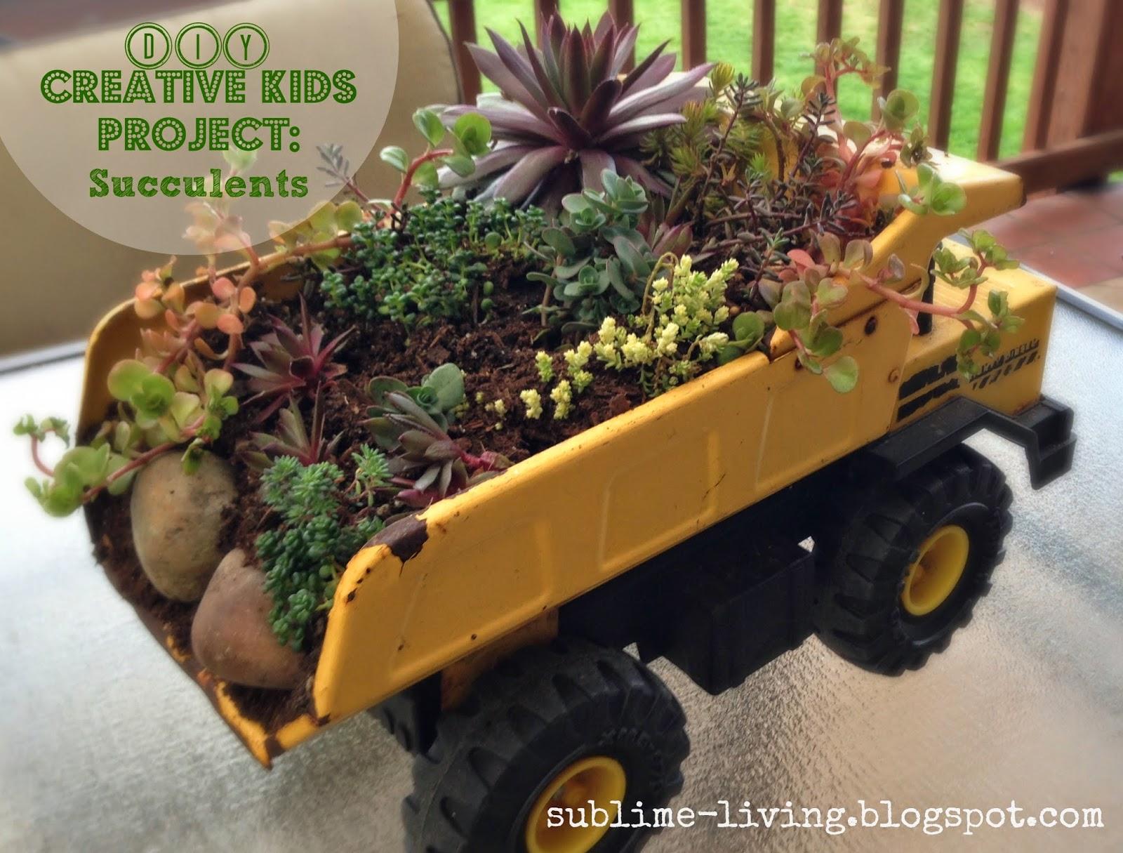 Sublime Living: Ta-Dah... The Completed DIY Kids Succulent Garden ...