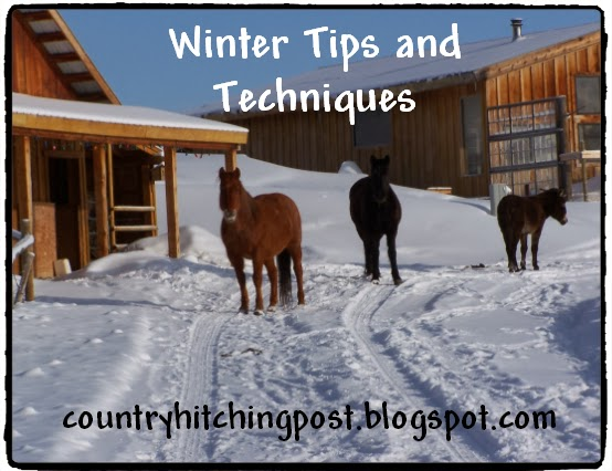 http://countryhitchingpost.blogspot.com/2014/01/winter-tips-and-tricks-for-keeping.html
