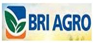 Lowongan Kerja Bank BRI Agro