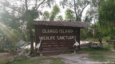 Olango Island in Cebu travel diary wildlife sanctuary 2