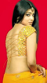 Shriya Saran Backless Blouse Saree Fashion by Shriya Saran   Bollywood Fashion Special