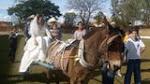 Festa Junina--Casamento Caipira