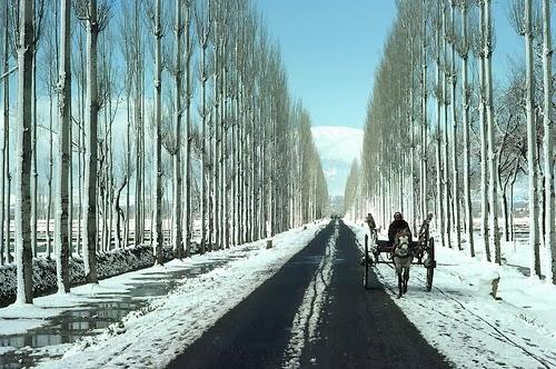 http://www.aadyaetravel.com/Kashmir_holidays.aspx
