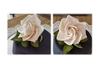 Detalles de mi primera Rosa