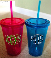 double wall acrylic cup