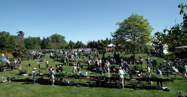A Growing Affair, May 12- plant sale area, UBC Botanical Garden , Vancouver