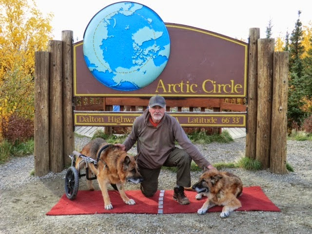 Leben and Erde at their second visit to the Arctic Circle in Alaska, 2013