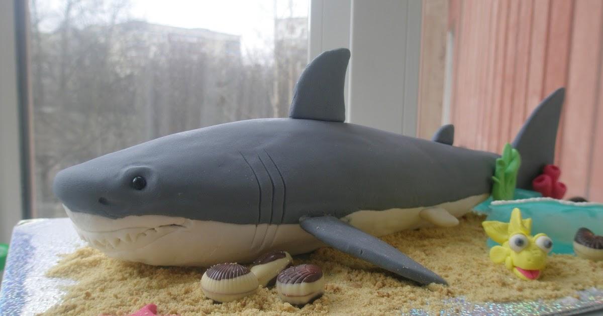 Как сделать акулу в домашних условиях