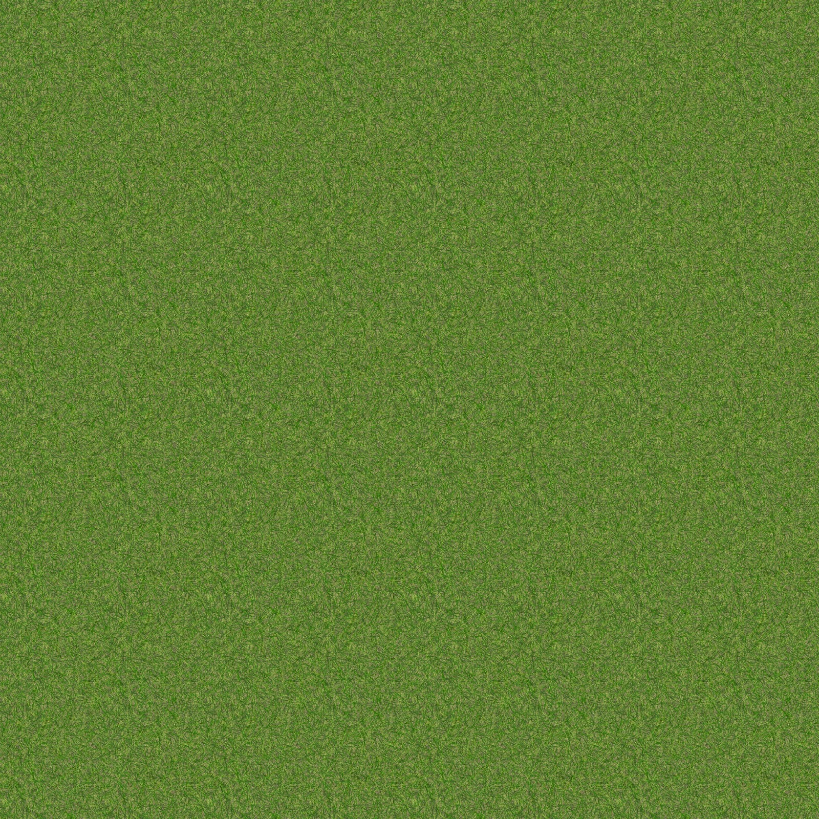 Grass high view seamless texture 2048x2048