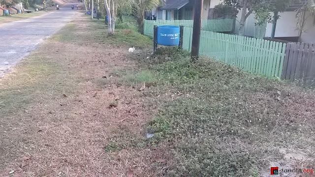 Rumput Tetanggaku Ternyata Memang Lebih Hijau-5