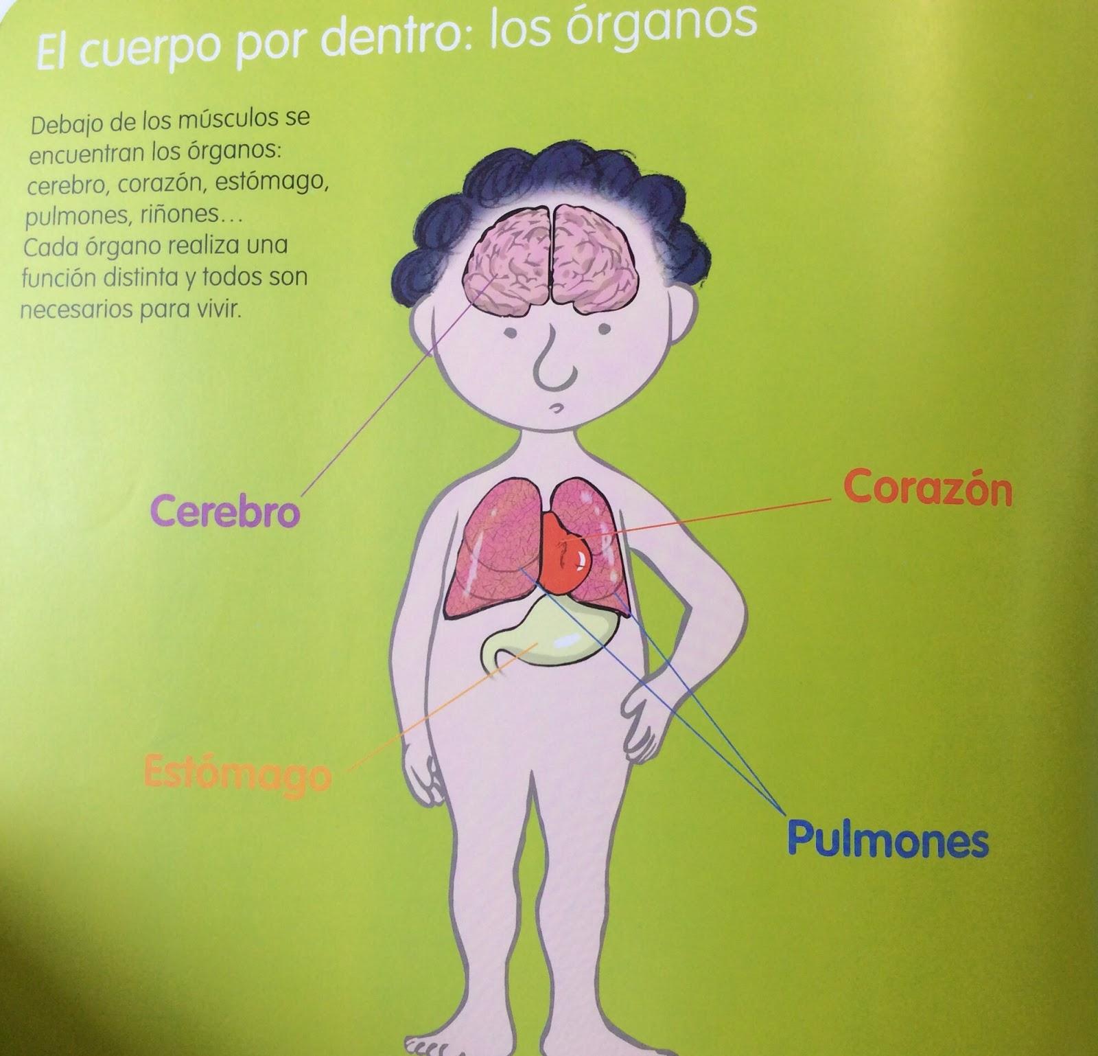 El blog de Chus Infantil: Libro informativo: \