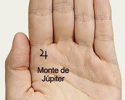 Monte de Júpiter abultado y Linea del Corazón descansando en él.
