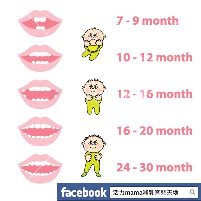 """俗語有云: """"七坐八爬九發牙"""" ,父母親常用此來評估寶寶的發展或發育是否有問題。"""