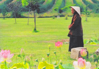 Thich Nhat Hanh over gelukkig zijn door mindfulness