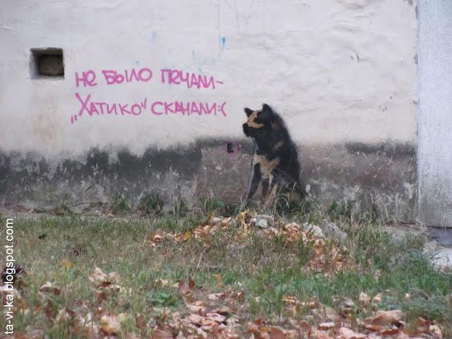 граффити Симферополя Simferopol's graffiti