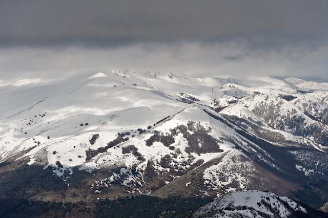 Monti della Magnola