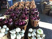 Onions Galore
