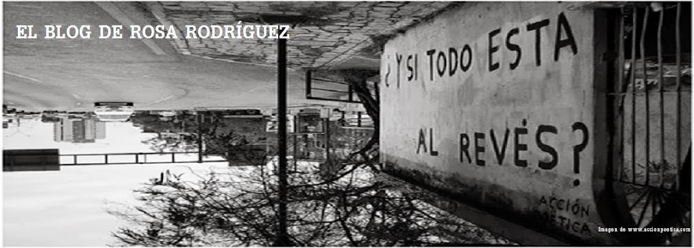 El Blog de Rosa Rodríguez